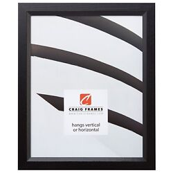 Craig Frames Economy Black Simple Hardwood Picture Frame 11
