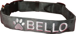 PERSONALIZED COLLARS Custom Embriodery for your Pet Includes Logo USA Made $27.99
