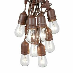 37.5 Foot S14 Outdoor Globe String Lights - Set of 25 Clear S14 Edison Bulbs