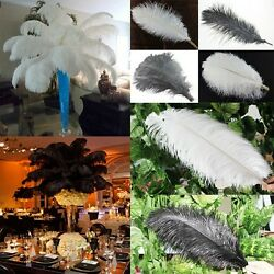 Black white Ostrich Feathers DIY Widding supplies Sewing colorful Millinery