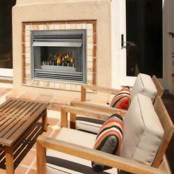 NAPOLEON GSS36 OUTDOOR GAS FIREPLACE STAINLESS STEEL W LOGS 40K BTUs