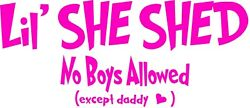 Lil' She Shed No Boys Allowed (except Daddy) Bedroom Wall Decal Girls Playroom