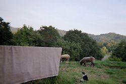 WOOL Blanket  72x90 GREAT GIFT: free book about the sheep with purchase