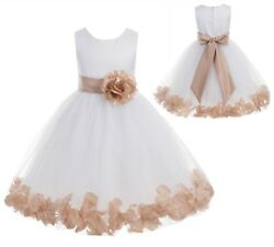 Flower Girl Dress Wedding Dress Birthday Dress Pageant Dresses Rose Petals Dress