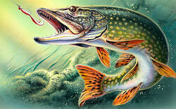 Pike fishing angling advertising vintage retro signs repro wall art GBP 5.00