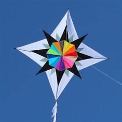 Rainbow Kite Star Large Enif 48quot;x48quot; RipStop Line 33 foot Fringe Tail Case $65.00
