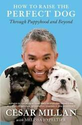 How to Raise the Perfect Dog: Through Puppyhood and Beyond VERY GOOD $4.09