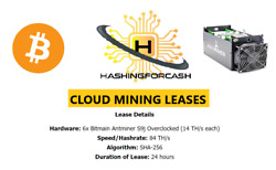 84THs ANTMINER S9 ASIC  24 Hour Bitcoin Mining Rental  Contract Lease BTC BCH $23.72