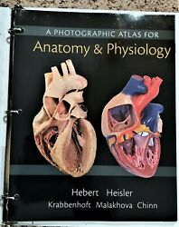 A Photographic Atlas for Anatomy amp; Physiology Hebert Heisler $30.00