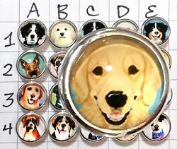 Kameleon Dog JewelPop; Choose Your Dog For Kameleon Rings and Jewelry $12.00