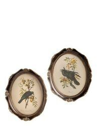 Victorian Trading Co Set of 2 Oval Raven Framed Prints Antique Aviary Wall Art $59.95