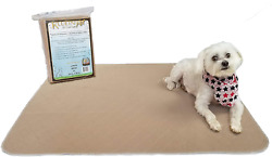 Kluein Pet Washable Pee Pads for Dogs 2 Pack XL 34 x 36 Beige Reusable Puppy $38.76