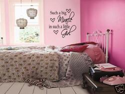 BIG MIRACLE LITTLE GIRL Bedroom Wall Art Decal 24quot; $13.99
