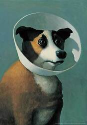 Michael Sowa Dog with Cone Print Poster Novelty Animals Fantasy Dogs Animals $18.00