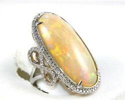 Fine Long Oval Fire Opal Solitaire Ring wDiamond Halo 14k White Gold 15.73Ct