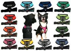 Agility Dog Mesh Padded Soft Puppy Pet Dog Harness Breathable 12 Colors 5 Sizes $18.99