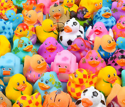 Rhode Island Novelty Rubber Ducks assortment 2 inches 50 Pieces Toys amp; Games $24.92