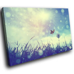 SC450 Blue Butterfly Dandelion Flower Nature Canvas Wall Art Large Picture Print