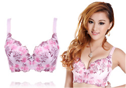 brasier mujer Women Retro fashion girl style Exquisite Embroidery padded Bras