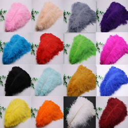 Wholesale 10-500 Pcs High-quality Natural Ostrich Feathers 6-24 Inch15-60cm