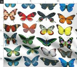 Butterfly Collection Bug Insect Wings Fabric Printed by Spoonflower BTY