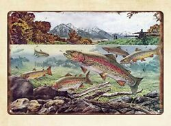 western home decor Trout Magazine American Museum Of Fly Fishing metal tin sign $17.98