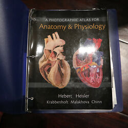 A Photographic Atlas for Anatomy amp; Physiology Looseleaf in Binder Herbert GOOD $35.00