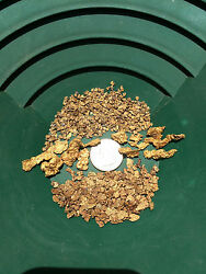 Premium LOADED Gold paydirt concentrates Two Pounds Panning Flakes Nuggets $29.99