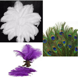 20pcs 10-14 Inch Natural Ostrich Peacock FEATHERS for Wedding Decor DIY Crafts