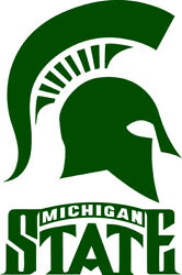 Michigan State Spartans Corn Hole (Bag Toss) 18