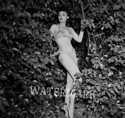 BEAUTIFUL ANNE  BANCROFT WHEN SHE WAS YOUNG STANDING IN TREES PUBLICITY PHOTO