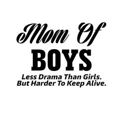 Car window decal truck outdoor sticker mom of boys funny lol momma mother $4.00