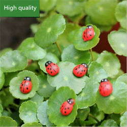 100x Miniature Decorative Wooden 3D Art Ladybird Ladybug Fridge Wall-Stick asw