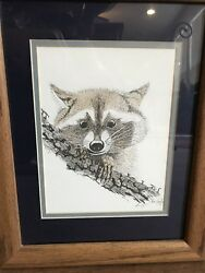 Raccoon Sketch Matted Framed Signed 1976 Round Rock Texas Artist Don Kent 11x14