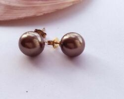 Pretty New Gold 10mm Brown Bronze South Sea Shell Pearl Post Stud Earrings