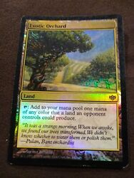 Exotic Orchard Foil - NM - English Magic the Gathering MTG Conflux Magic Card
