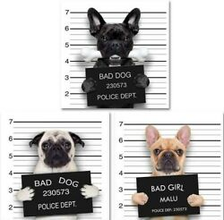 Cool Wall Canvas Art Bad Dog Collection Ideal for Home Or Office Wall Decor Set $29.95