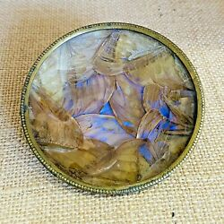 Vtg. Brass amp; Glass Encased Real Butterfly Wings Footed Trinket Dish Organic Art $24.00