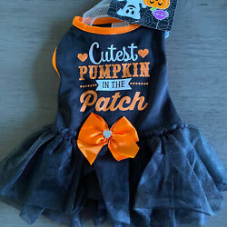 SIMPLY WAG quot;CUTEST PUMPKIN IN THE PATCHquot; DRESS Puppy Dog MEDIUM $16.50