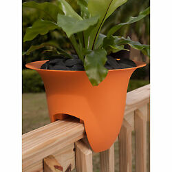 Bloem Modica 18-inch Tequila Sunrise Deck Rail Planter (6 pack)