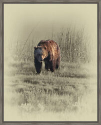 Ashton Wall Décor LLC Wildlife and Lodge 'Grizzly' Framed Photographic Print
