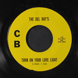 DEL RAY'S: Turn On Your Love Light  Anna (go To Him) 45 Hear! (undocumented an
