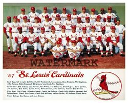 MLB 1967 World Series Champion St. Louis Cardinals Color 8 X 10 Photo Picture $5.99