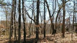 56 Twin Peak Dr. Holiday Island Arkansas 72631 (Wooded Hillside Building Lot)