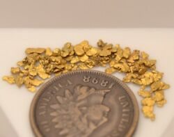 1 Gram Bering Sea Gold Small Placer Nuggets from Nome Ak. 2019