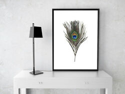 A4 MODERN PEACOCK FEATHER PICTURE POSTER PRINT WALL ART MINIMALIST MODERN GBP 3.99