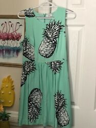 NWT Crown amp; Ivy Pineapple Garden Party Women Dress. Size 6 Short Lined $11.00