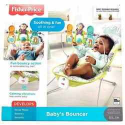 Fisher Price Dtg94 Fisher Price Baby#x27;s Bouncer Green Blue Grey $42.87