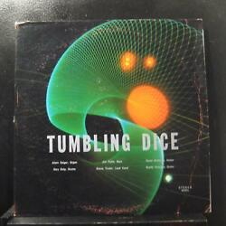Tumbling Dice - Tumbling Dice LP VG+ 42301 Garage Psych Private Vinyl Record