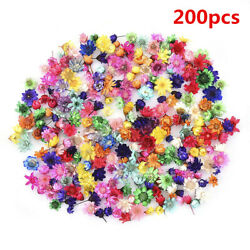 200x Real Dried Flower For DIY Art Craft Epoxy Resin Pendant Jewellery Making G1 $5.99
